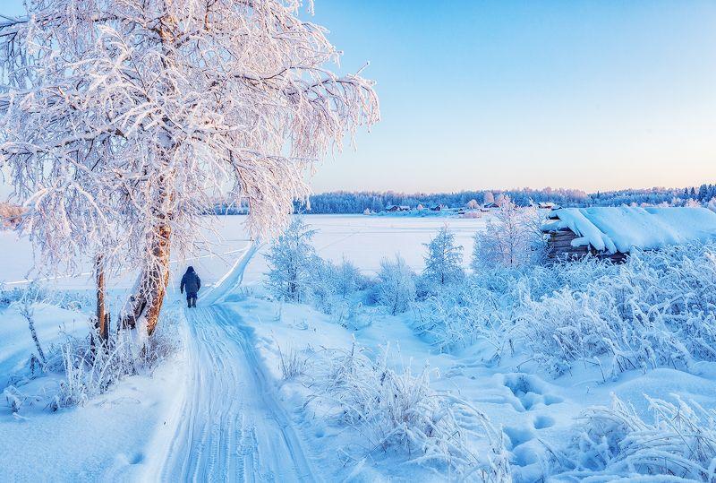 кенозеро, мороз, утро, зима От деревни до деревни, рукой подать.photo preview