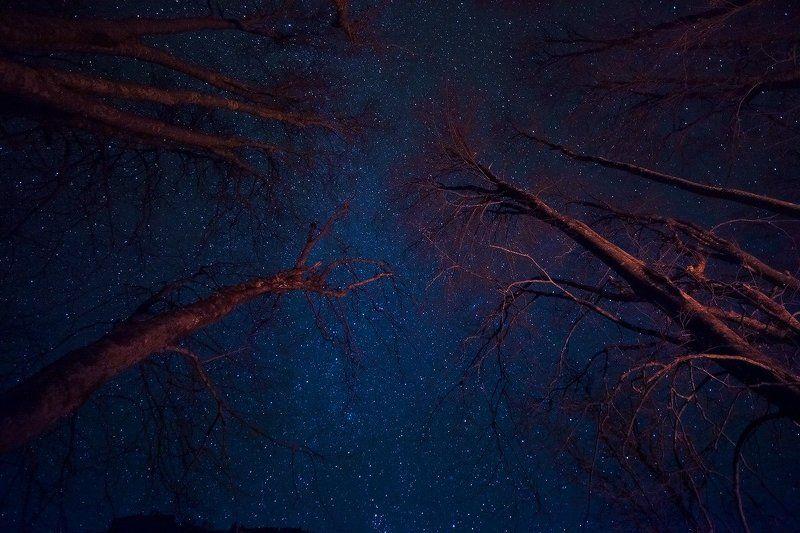 Под звёздамиphoto preview