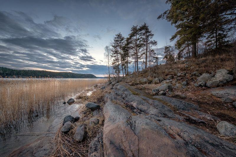 карелия, ладога, залив, закат, скалы, камни, деревья, облака, холод, пейзаж, природа Карельские камниphoto preview