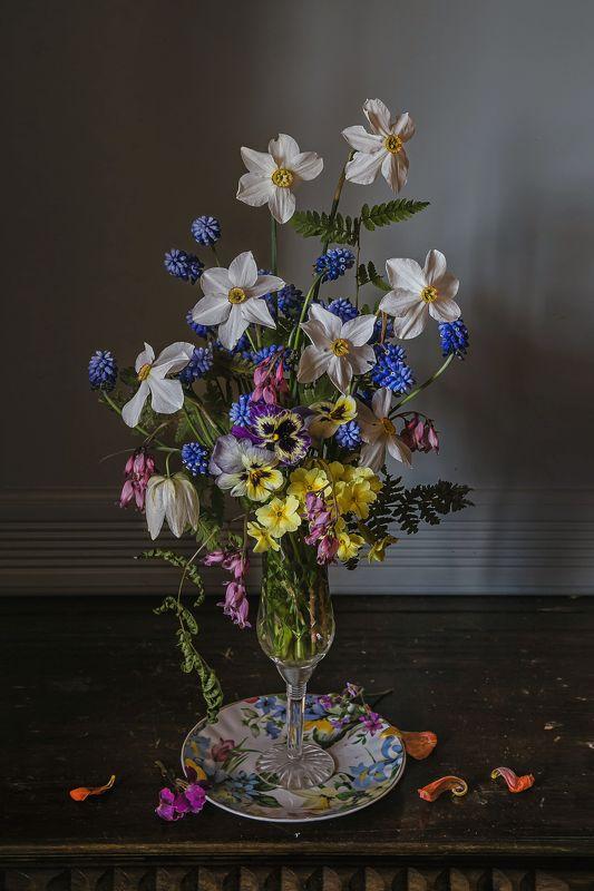 натюрморт, стекло, фарфор, цветы, нарциссы, мускари Весна на блюдцеphoto preview