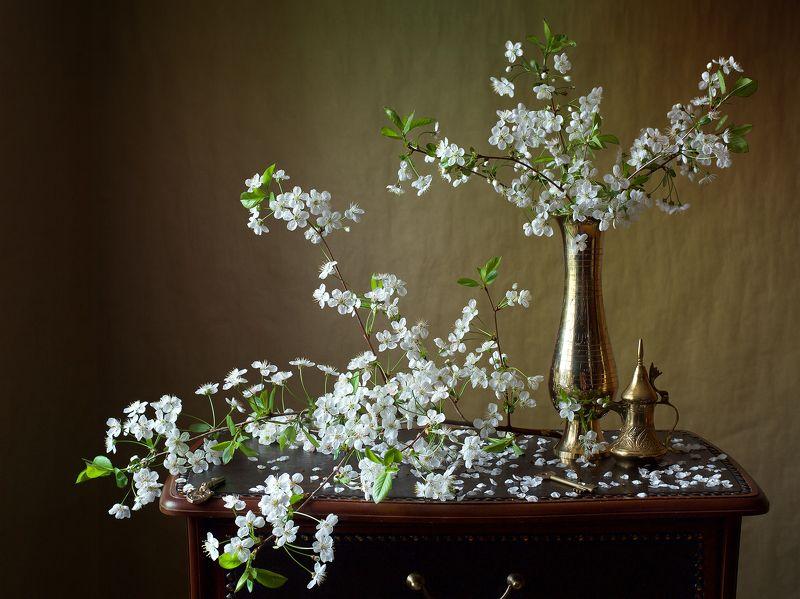 миламиронова, фотонатюрморт, весна, цветы, цветение, вишня, аромат, красота, настроение, букет, ваза Вишнёво цвёл сад...photo preview
