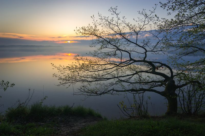 туман, московская область, утро, природа, пейзаж, рассвет, водохранилище,  солнце Рассвет на Истринском водохранилищеphoto preview