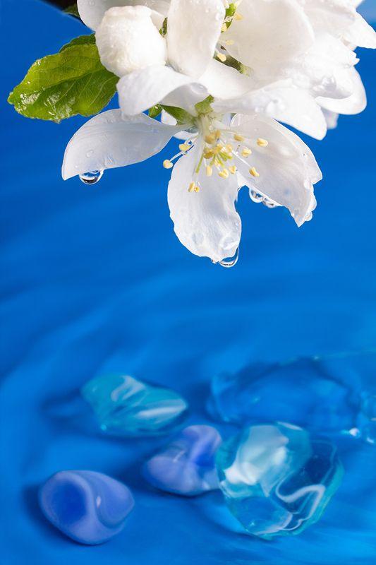 Водные процедурыphoto preview