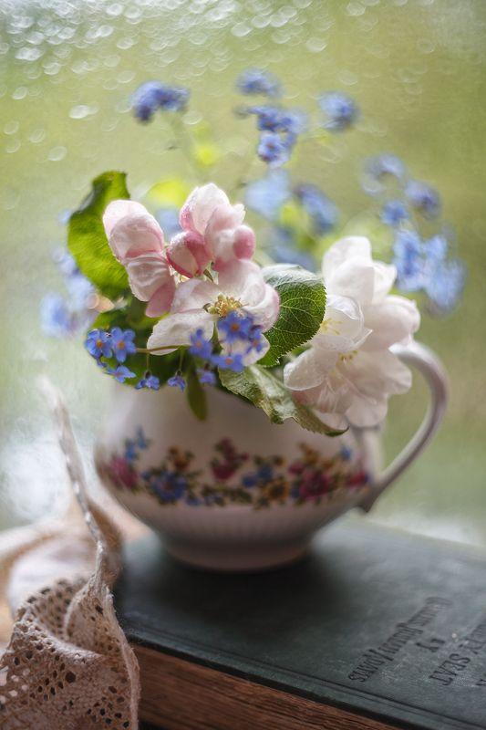 теплая акварель весны, жизнь, нежность, яблоневый цвет, незабудки,бантик,гелиос 77-м Акварельный  бантик)photo preview