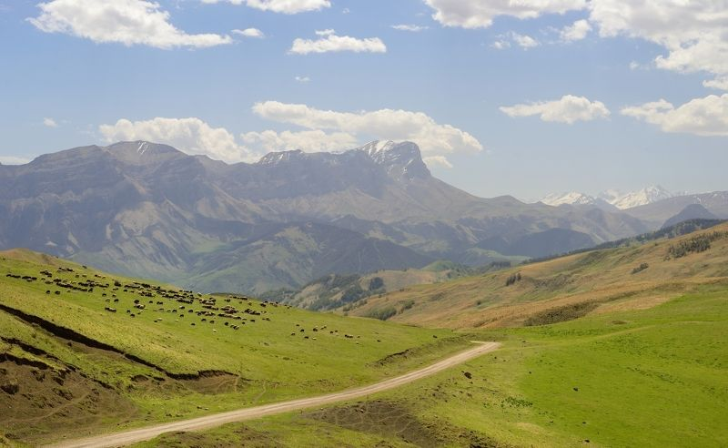 горы весна На перевалеphoto preview