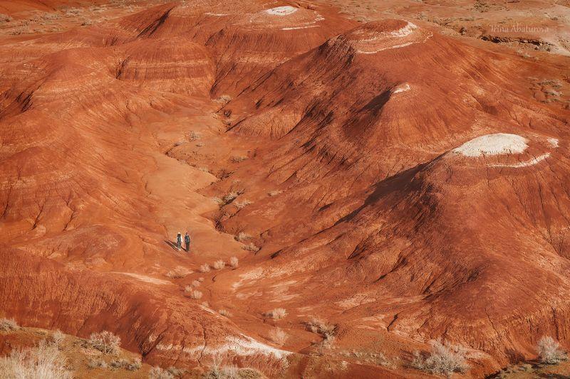 актау, алтын-эмель, красный, меловые горы, казахстан Есть ли жизнь на Марсе?photo preview