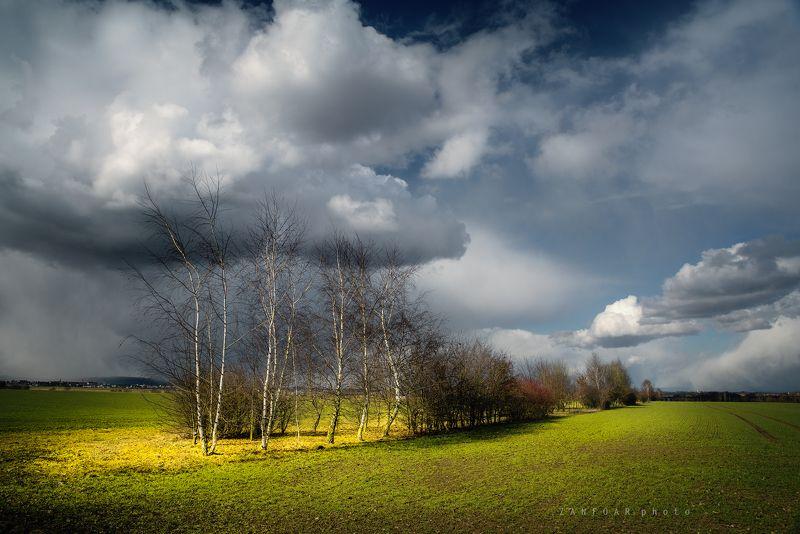 весенние сцены ,весна, деревья, поля, облака ,zanfoar,занфоар,czech republic,moravia,bohemia,чешская республика,чехия весенние сценыphoto preview
