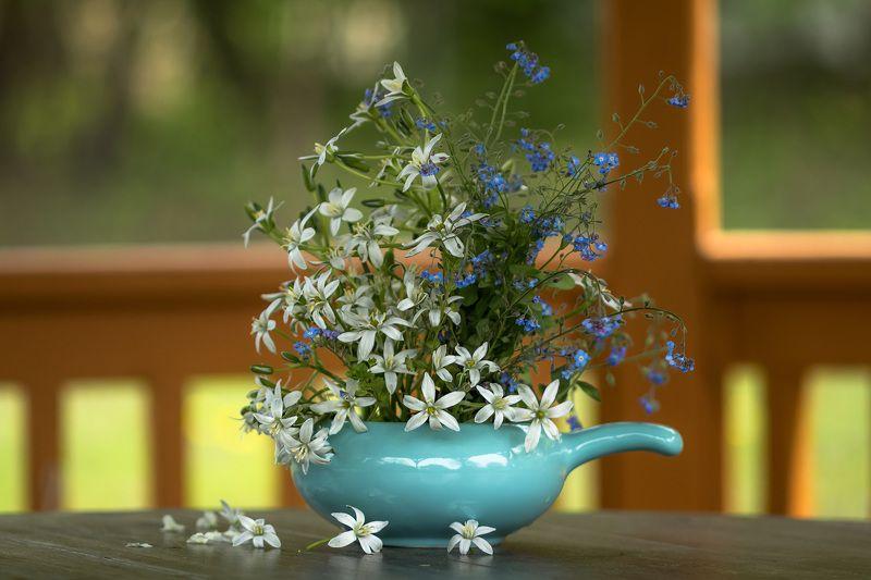натюрморт,весна,цветы,этюд, Утро.photo preview
