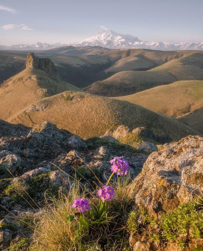 северный кавказ, карачаево-черкесия, эльбрус, весна, Весна в приэльбрусьеphoto preview