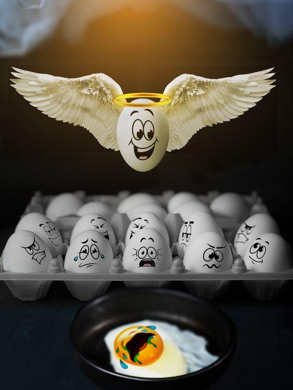 Когда берёшься за яйца, результат может быть неожиданный...photo preview