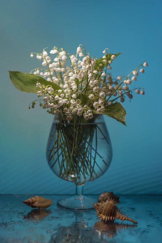 Как жемчуг белые цветы....photo preview