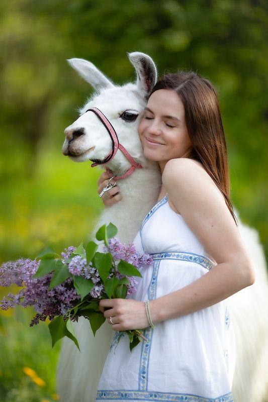 девушка,лама,дружба,красота, настроение, идиллия,природа, girl,lama, friends, emotions, nature Идиллия фото превью