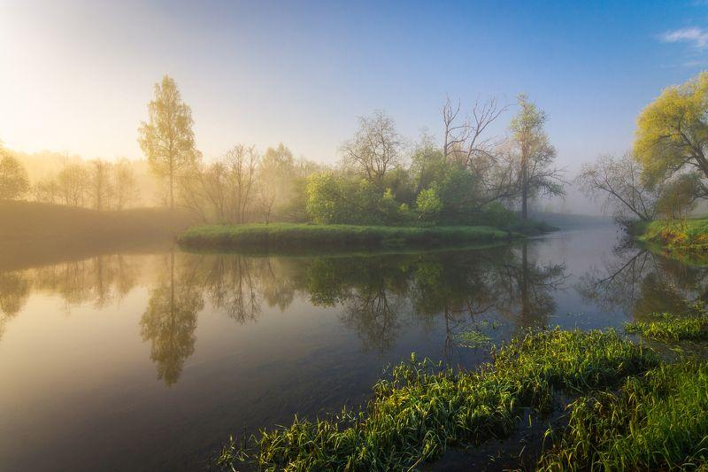 лето, пейзаж, рассвет, природа, утро, туман, река, истра, московская область, май, весна Майские туманы на Истреphoto preview