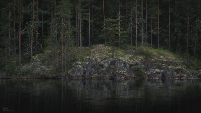 весна, лес, озеро, тайга, ленинградская область, выборгский район Дебриphoto preview