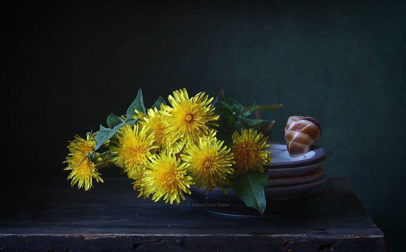 натюрморт, цветы, одуванчики, весна Одуванчикиphoto preview