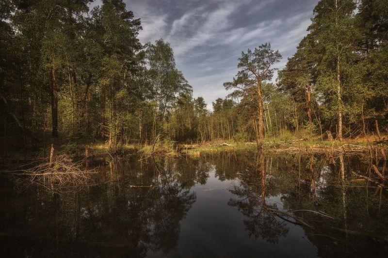 озеро, горы, лес, природа, закат, рассвет, красота, приключения, путешествие, облака Отражениеphoto preview