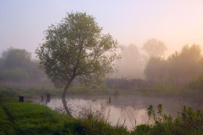 май серково рассвет туман Уютное местоphoto preview