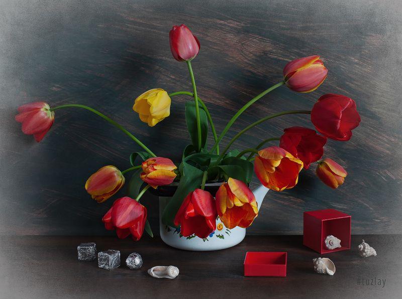 тюльпаны Про красную коробочку и тюльпаныphoto preview