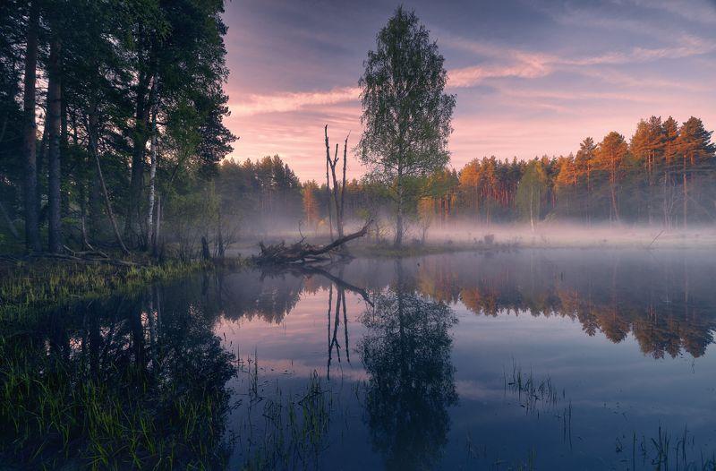 Гляжу в озёра синие ...© фото превью