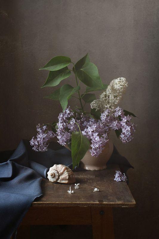 натюрморт, цветы, сирень, весна, май **photo preview