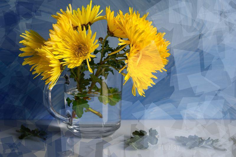 хризантемы Цветочная фантазия с полигональным уклоном...photo preview