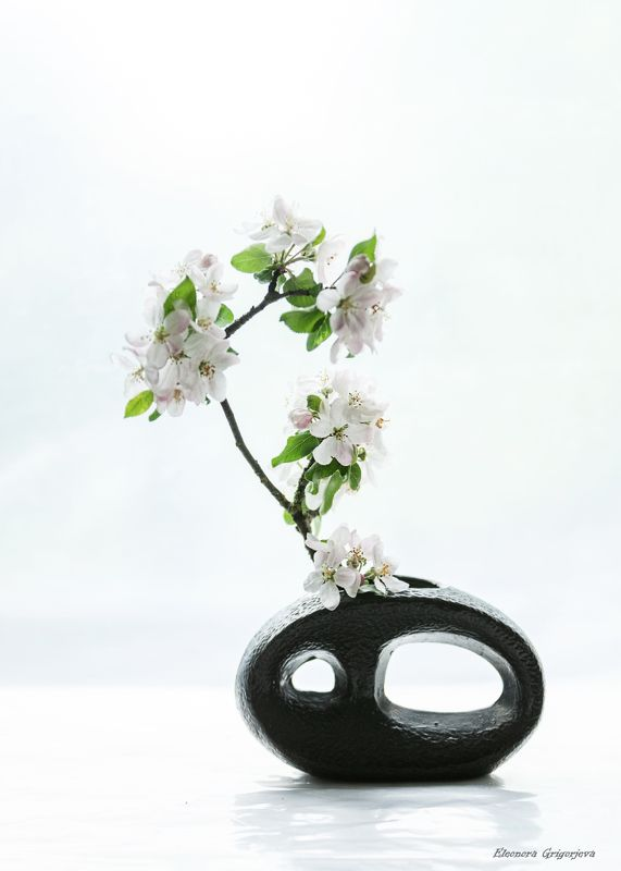 Время цветения. Яблониphoto preview