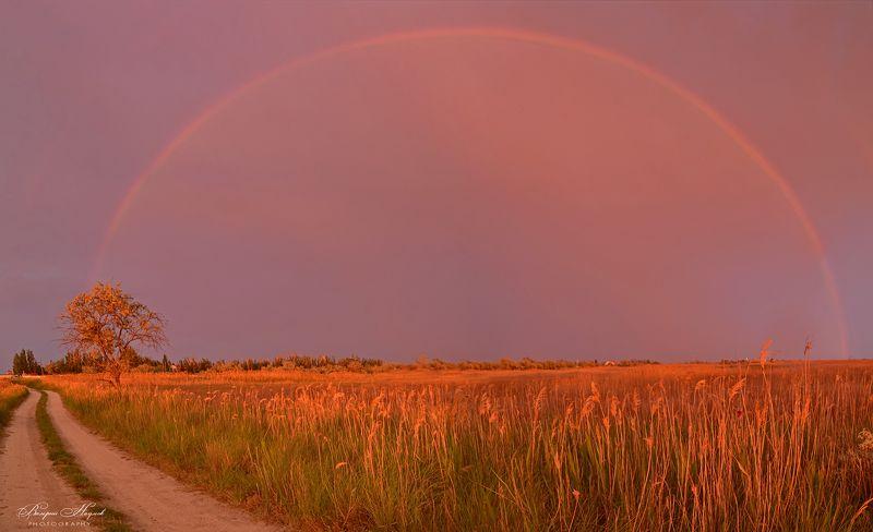 азов, закат, вечер, дождь, приазовская степь, арабатская стрелка, радуга Радуга на закатеphoto preview