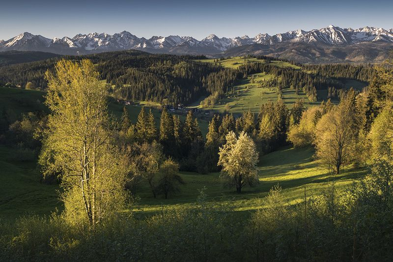 Spring in the Tatrasphoto preview