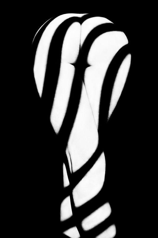 art nude, art nude, fine art nude, bw nude, estet mf, minimalism nude, surreal nude, shadows, zebra shadows, art shadows, zebra Zebra ass 4photo preview