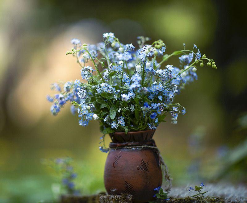 цветы,букет,красота,весна, природа, flower, beautiful,spring, nature Весенний букетик фото превью