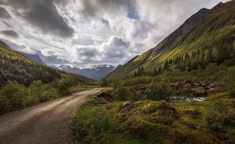 норвегия, дорога, горы, деревья, мост, облака, Дорога через мост в горах Урке Норвегии.photo preview
