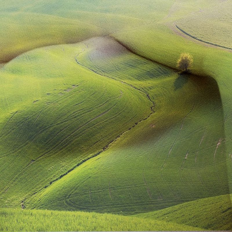 meadows, fields, green grass, hills, female body, chest, art, perspective, illusion, oasis, wood, meadows фото превью