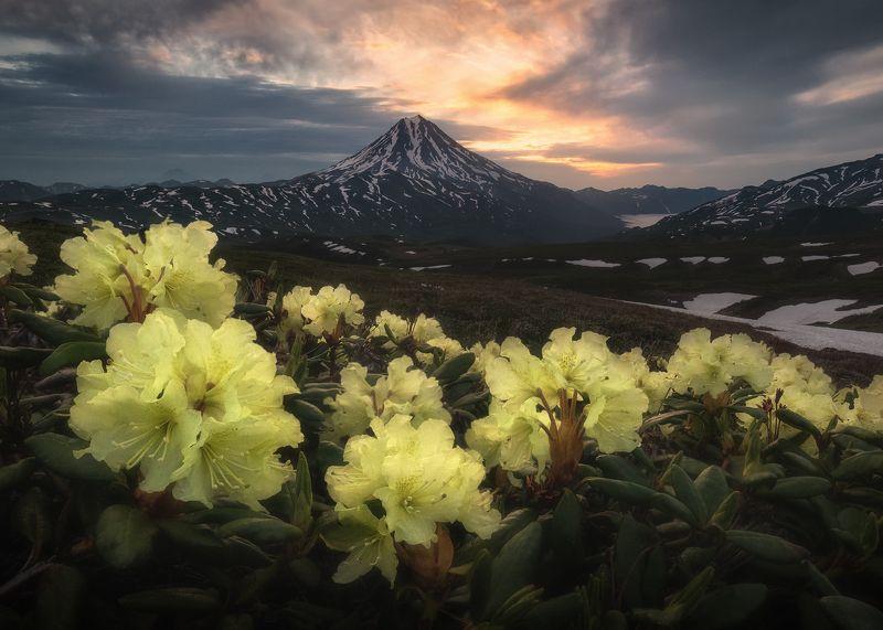 Рассвет над Вилючинскимphoto preview