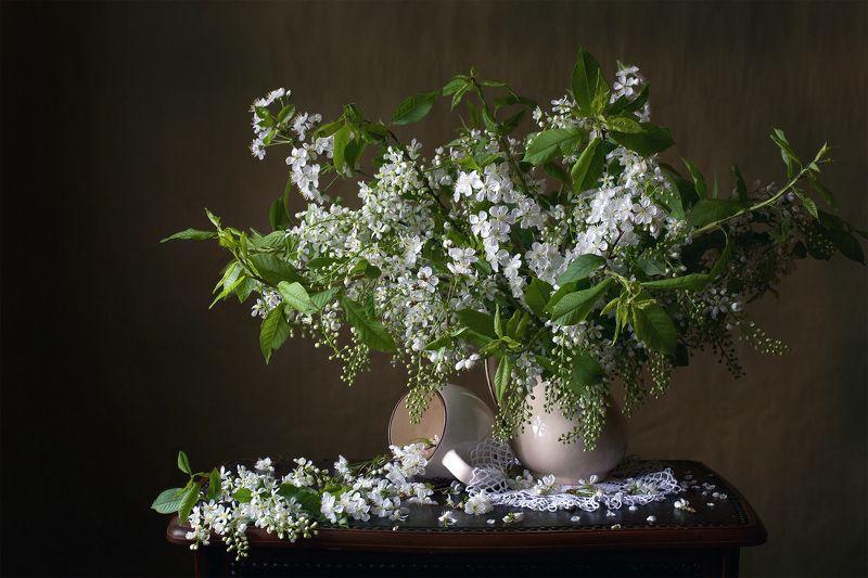 миламиронова, фотонатюрморт, весна, букет, цветы, цветение, черёмуха, аромат, настроение С ароматом черёмухи...photo preview