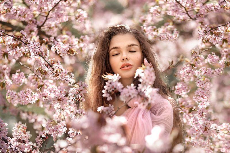 портрет девушка женский портрет цветение сакура Тинаphoto preview