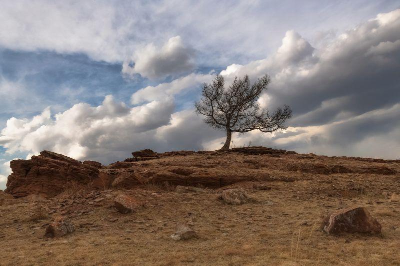 хакасия, сундуки, долина онло., Вслед за облаками.photo preview