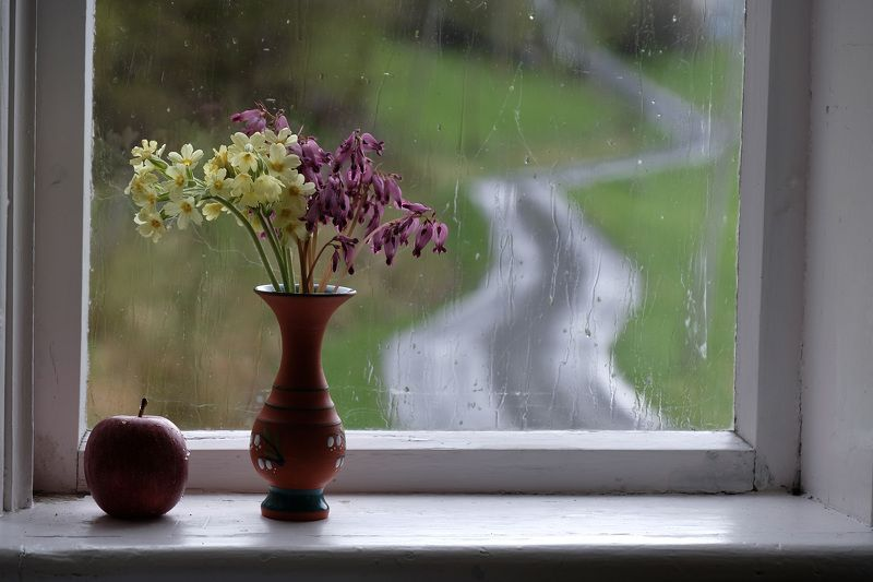 Still life, road, colors, rain, apple, flowers, purple, yellow, nature, weather, Norway, flora, window, glass,  Дорога...photo preview