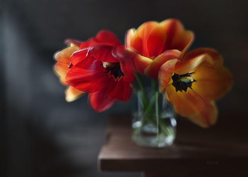 тюльпаны Про большие тюльпаны в маленькой кружкеphoto preview