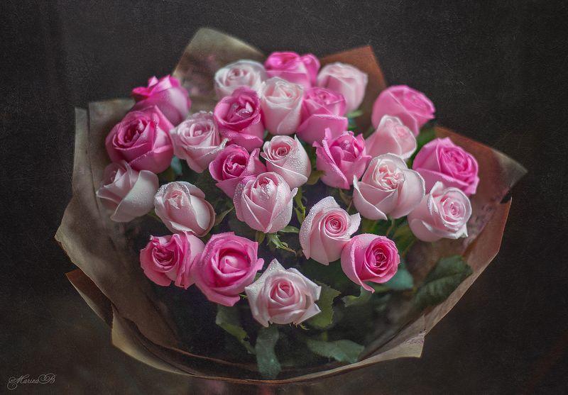 розы, капли, букет, розовые Розовые сныphoto preview