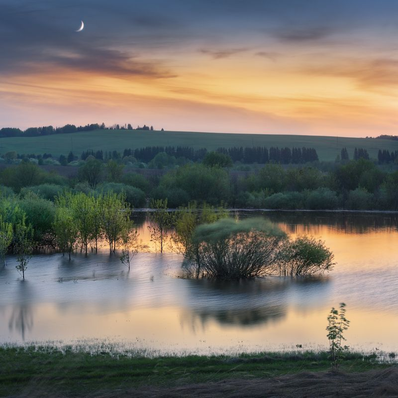 сумерки, луна Гулял по полю ветерокphoto preview