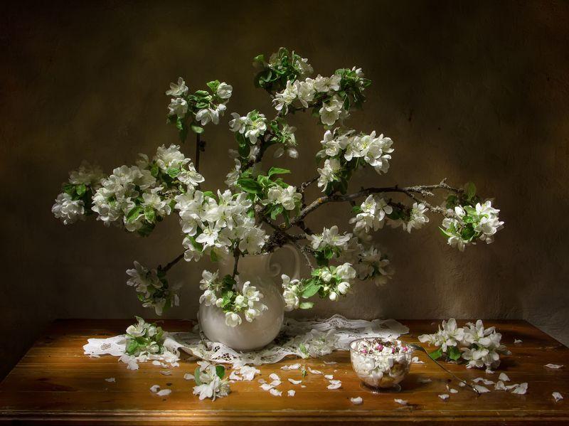натюрморт, яблоня, цветет Яблонька.... фото превью
