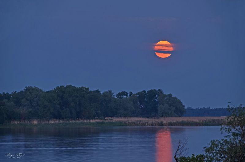 полнолуние, река, восход, май, дорожка, берег, острова В просветах туч Луна всходилаphoto preview