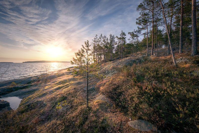 ладога, скалы, рассвет, солнце, лужа, лед, деревья, облака, пейзаж, природа Ладожский берегphoto preview