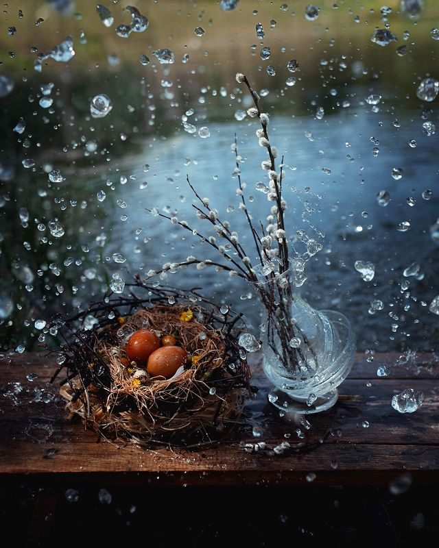 натюрморт, апрель, природа, верба 12 месяцев. Апрельphoto preview