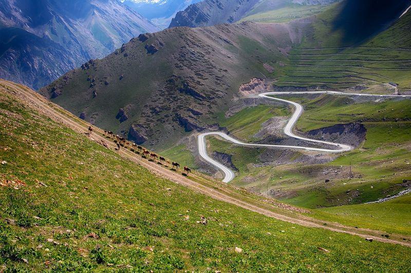 кыргызстан, горы Дороги, которые мы выбираемphoto preview