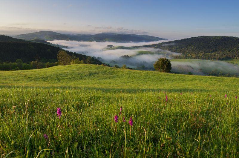 bieszczady, spring, mountains, green, sky, fog, morning, lanscape Spring in the Bieszczady Mountainsphoto preview