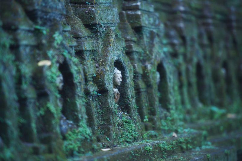 Bali vibephoto preview