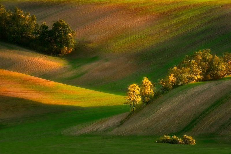 Landscape Moravia photo preview