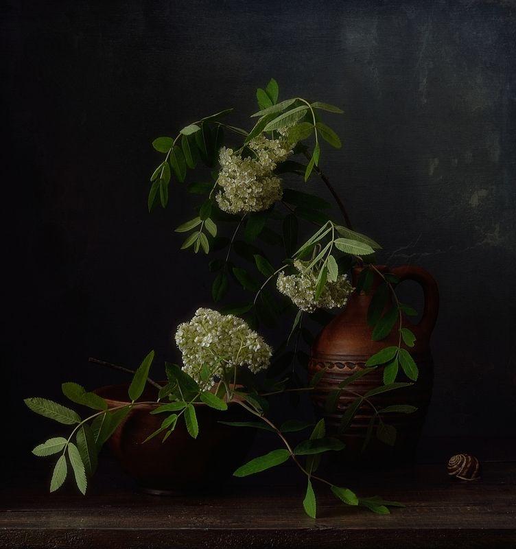 натюрморт,рябина,цветы,лето рябиновый... фото превью