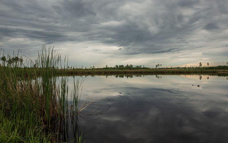 пейзаж, кулебаки, landscape, лето, summer, water, пруд, pond, небо, облака, отражение, heaven, clouds, reflection Между небом и водой...photo preview